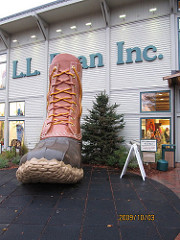 ll bean photo