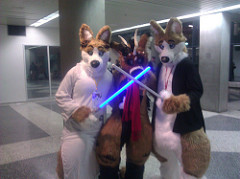 furries photo